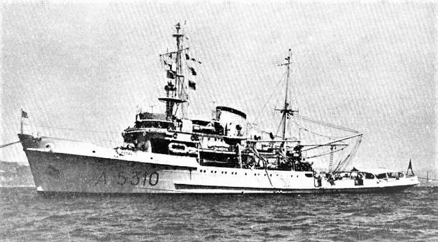 Italian_submarine_rescue_ship_Proteo_(A5310)_c1962