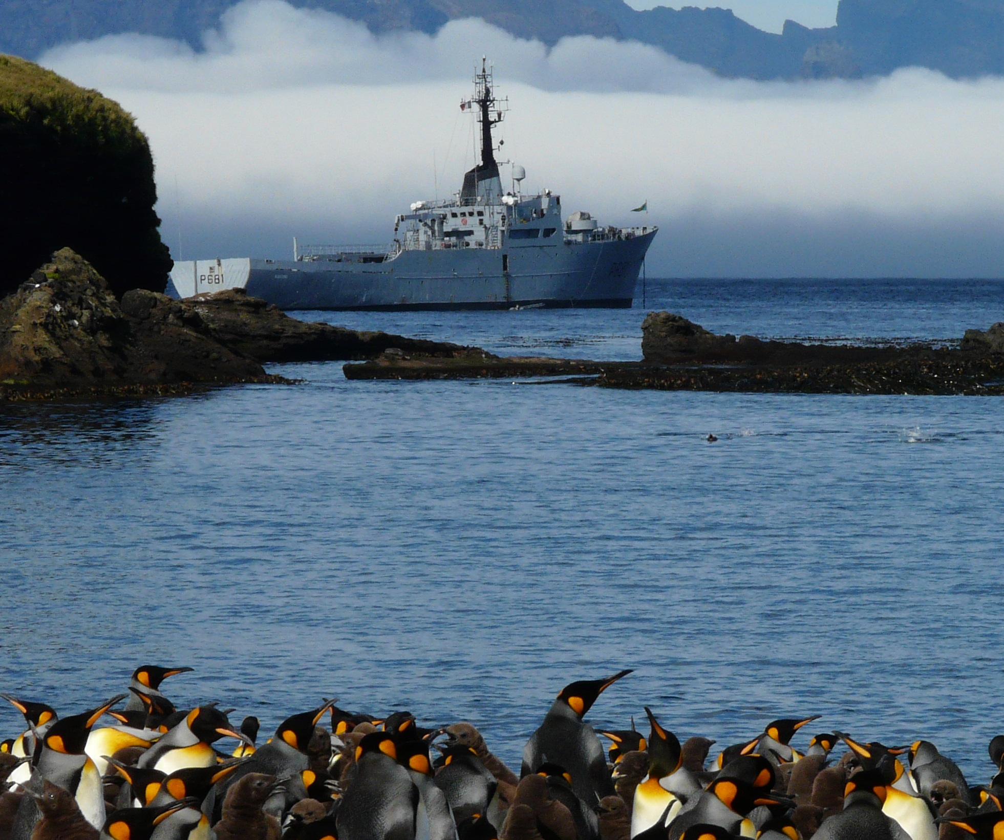 Patrouilleur_austral_Albatros_(mars_2013)_-_panoramio_DETAIL